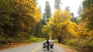pixel filled bicycle tour indiegogo