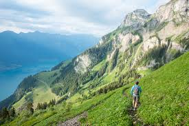 Swiss Alps Map Coming Up With Your Own Swiss Alps Trail Classic