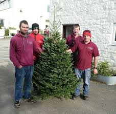 scottish christmas trees home facebook