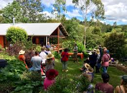 our permaculture life learn with morag