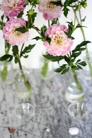 Tried And Tested How To Make Fresh Flowers Last Longer Gardenista