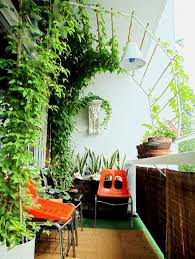 look living canopy on a tiny balcony apartment therapy