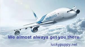 Malaysia Airlines Meme - malaysia airlines almost post from the lucky puppy pinterest