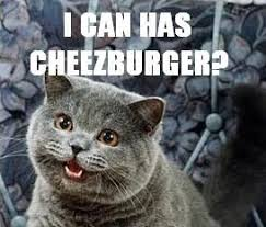 Cheezburger Meme Creator - worst fonts ever 11 exles of bad typography in print