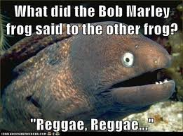 Reggae Meme - bob marley frog bad joke eel know your meme