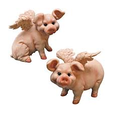 43 best when pigs fly images on pinterest flying pig pig stuff