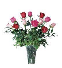 Multi Colored Roses A Dozen Multi Colored Roses Tf32 5 74 66