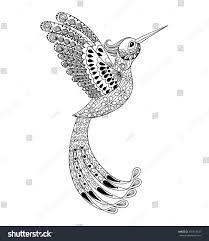 zentangle hand drawn artistically hummingbird flying stock vector