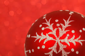 free images winter flower celebration decoration red