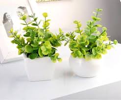 Small Desk Plants Office Desk Plant Small Plant For Office Desk Formidable For Home