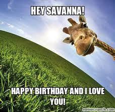 Meme Giraffe - savanna
