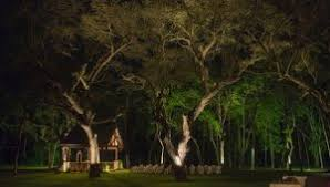 Houston Outdoor Lighting Houston Business Shares Outdoor Lighting Solutions With Photos Of