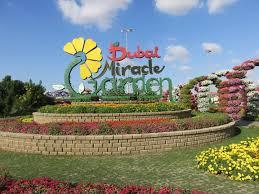 inside dubai miracle garden 2015 2016