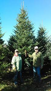 12 best greenwood christmas tree farm images on pinterest