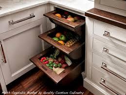 kitchen cabinets storage ideas collection in kitchen cabinet storage ideas with the 15 most