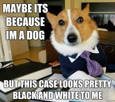 Dog Lawyer Meme - lawyer dog know your meme