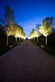 driveway lighting design landscape traditional with lighted