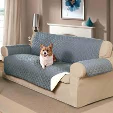 Leather Sofa And Dogs Leather Covers For Dogs Hotcanadianpharmacy Us