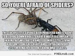 Funny Spiders Memes Of 2017 - 3 you re afraid of spiders meme pmslweb