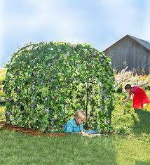 right in your own backyard garden fort grow a lush leafy fairytale dwelling right in your