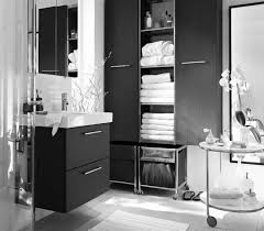 Black And White Bathroom Decor Ideas Black And White And Pink Bathroom Decor Walls Painted Of White