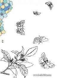 black and white butterfly coloring pages hellokids com