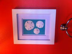 Where To Buy Sand Dollars Picture Frame Without Back Shells And Sand Dollars Glue Shells
