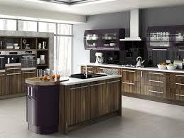 aubergine kitchen doors high gloss grey kitchen cabinets high