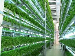 the internet of things meets hydroponics how to grow a better