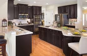 Espresso Kitchen Cabinets Birch Espresso Kitchen Cabinets New Home Design Best Custom