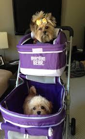 Overstock Com Pets 24 Best Dog Strollers Images On Pinterest Strollers Dog