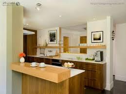 Modern Kitchen For Small Apartment Kitchen Design For Small Apartment Inspiring Goodly Small Modern