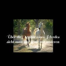 pferdesprüche pferdesprüche bestofinsta org