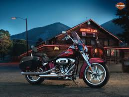 harley davidson softail slim laura williams