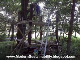 Old Fashioned House Modern Sustainability Old Fashioned Methods How To Build A Tree