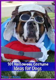 Zombie Dog Halloween Costume 100 Halloween Costume Ideas Dogs Fidose Reality