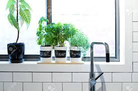 kitchen window shelf ideas kitchen window sill modern ideas exciting tile pictures
