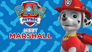 paw patrol meet everest paw patrol video nick jr uk