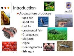 aquaculture microbiology i ppt
