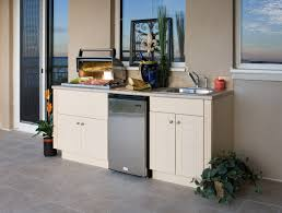 simple outdoor kitchen cabinets polymer home design ideas cool and