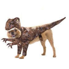 Radioactive Halloween Costume Costumes Dogs Ebay