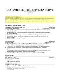 resume profile exles dissertation writing uk wrtting essays muslim voices how to