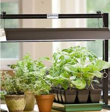 Indoor Garden Kit The 25 Best Herb Garden Kit Ideas On Pinterest Standing Planter