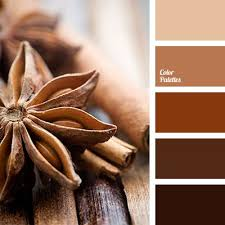 best 25 brown color schemes ideas on pinterest brown color