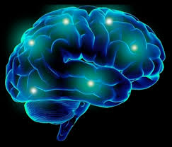 light up your brain light up your brain with act vervecast