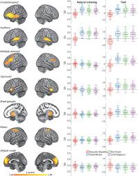 robust resilience of the frontotemporal syntax system to aging