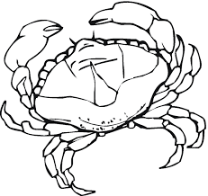 awesome crab coloring pages cool ideas for you 2674 unknown