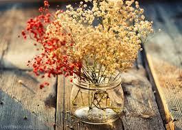 Autumn Flower 17 Best Mygift Ie Flowers Flowers Images On Pinterest