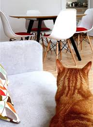 Furniture Clean House Fast Decorating by Top 10 Popular Home Interior Decorating Blogs Wave Avenue