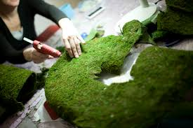 moss covered letters covered letters